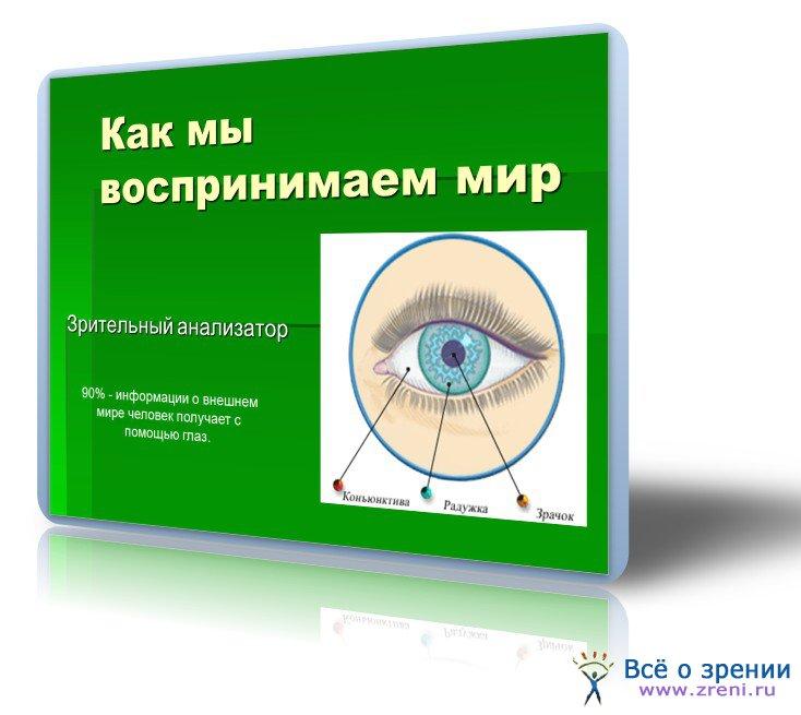 download Molecular Electro Optics: Electro Optic Properties of