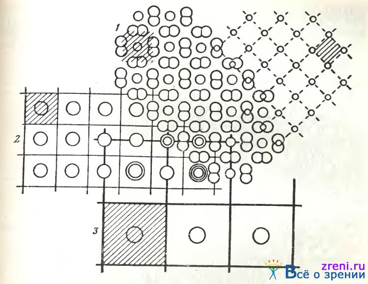 Схема соотношений регулярных