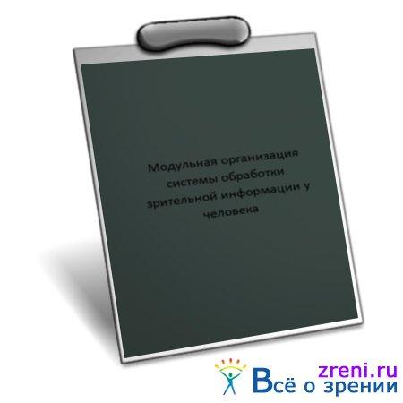 Модульная организация системы обработки зрительной информации у человека