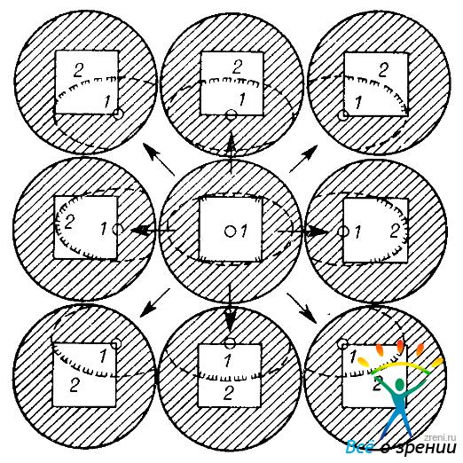 ЩЛ (схемы 9 полей зрения).