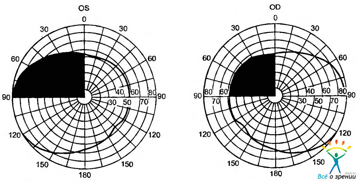 Основные функции органа зрения
