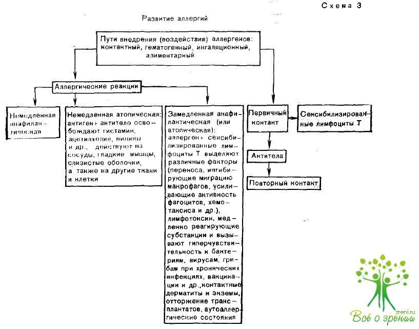 Аллергические болезни органа