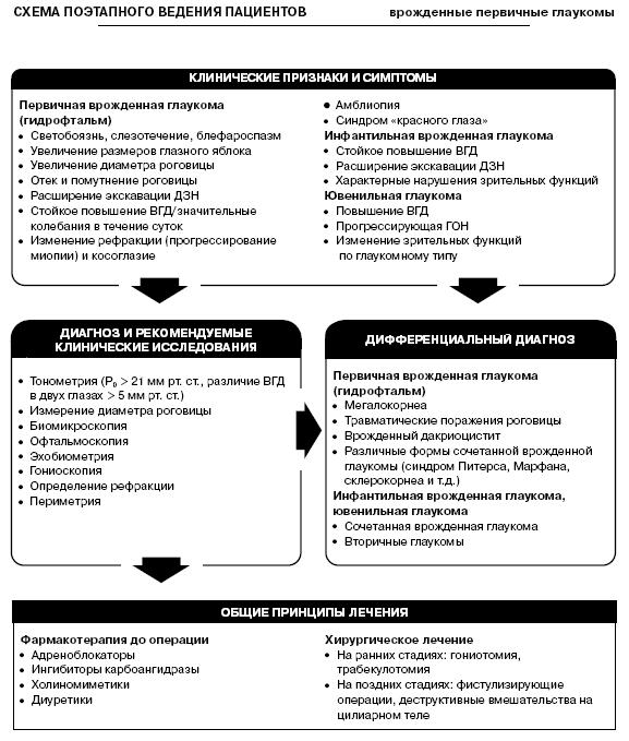 Программа коррекции амблиопии